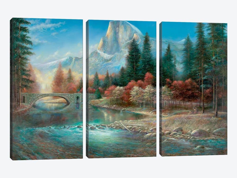 Yosemite by Ruane Manning 3-piece Canvas Wall Art
