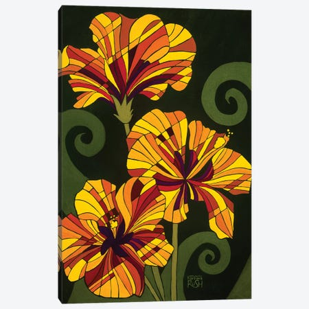 Hibiscus In Rhapsody Canvas Print #RUH14} by Barbara Rush Canvas Wall Art