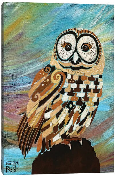 A Brand New Day Owl Canvas Art Print