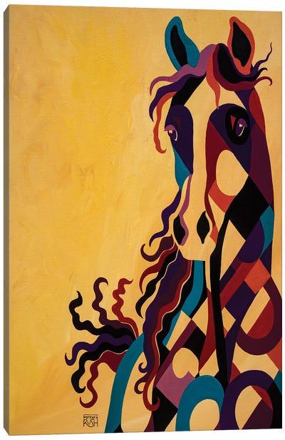 Curiosity Of Equus Canvas Art Print