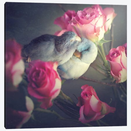 Love Blooms Canvas Print #RUP32} by Rupa Sutton Canvas Art Print