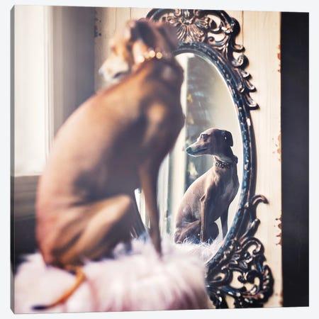 Mirror Mirror 3-Piece Canvas #RUP37} by Rupa Sutton Canvas Artwork