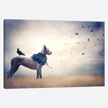 The Crow Queen Series Conspiracy Canvas Print #RUP64} by Rupa Sutton Canvas Art Print