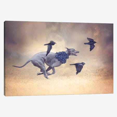 The Crow Queen Series Flight Canvas Print #RUP65} by Rupa Sutton Canvas Art Print