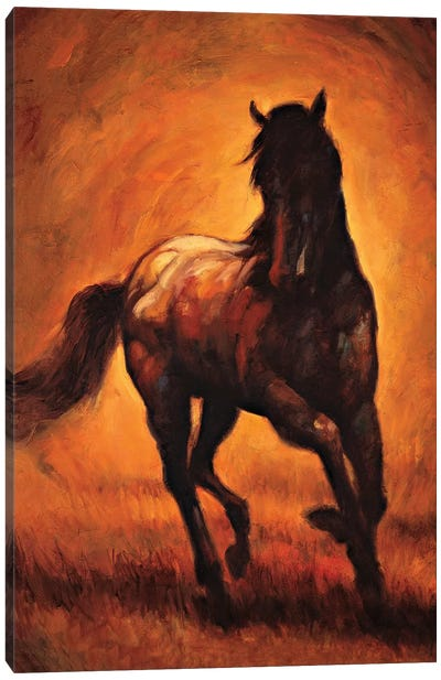 Stallion I Canvas Art Print