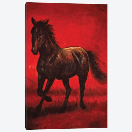 Stallion II Canvas Print #RVG2} by Ricardo Vargas Canvas Wall Art