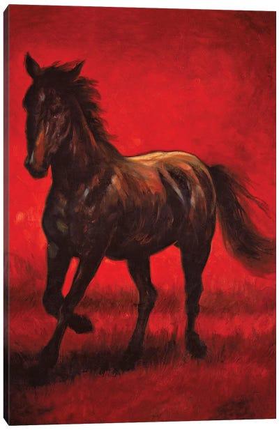 Stallion II Canvas Art Print