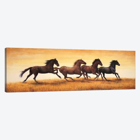 Stallions at Sunset Canvas Print #RVG3} by Ricardo Vargas Canvas Art