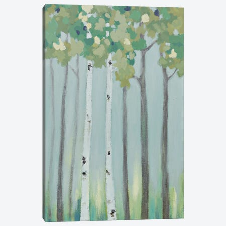 Forest View II Canvas Print #RVI7} by Rita Vindedzis Art Print
