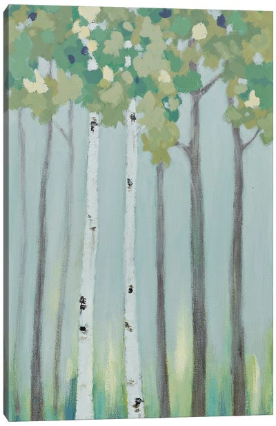 Forest View II Canvas Art Print
