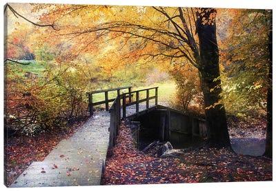Foot Bridge Canvas Art Print