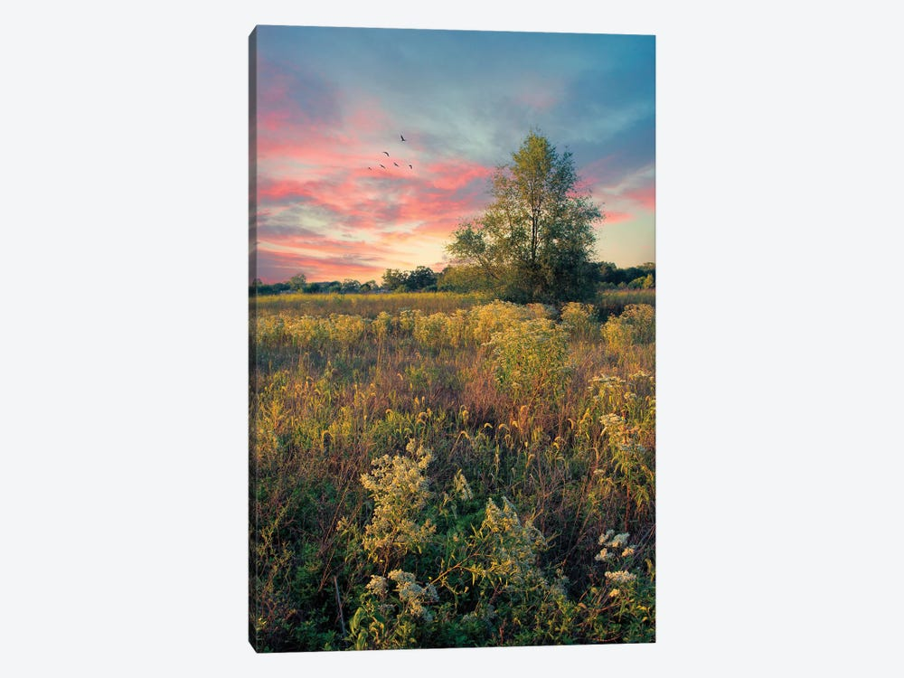 Grateful For The Day by John Rivera 1-piece Canvas Artwork