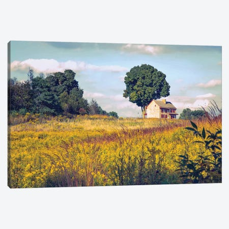 House On A Hill Canvas Print #RVR17} by John Rivera Canvas Artwork