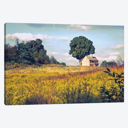 House On A Hill Canvas Print #RVR17} by John Rivera Canvas Artwork