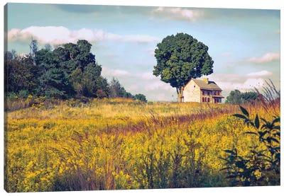 House On A Hill Canvas Art Print