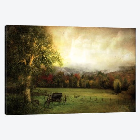 Abandoned Wagon Canvas Print #RVR1} by John Rivera Canvas Art