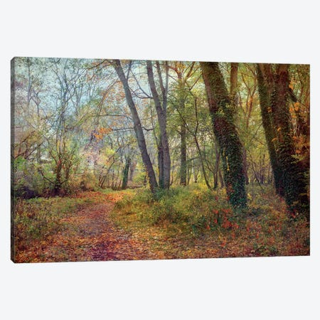 Poetic Season Canvas Print #RVR22} by John Rivera Canvas Art