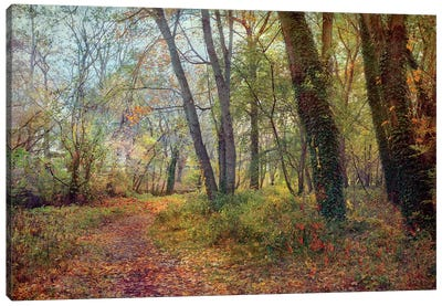 Poetic Season Canvas Art Print