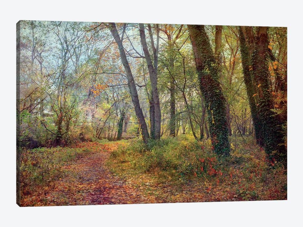 Poetic Season by John Rivera 1-piece Canvas Art Print