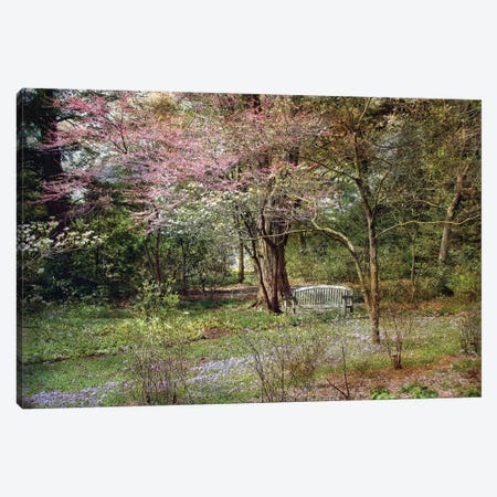 Spring Canvas Print #RVR24} by John Rivera Canvas Print
