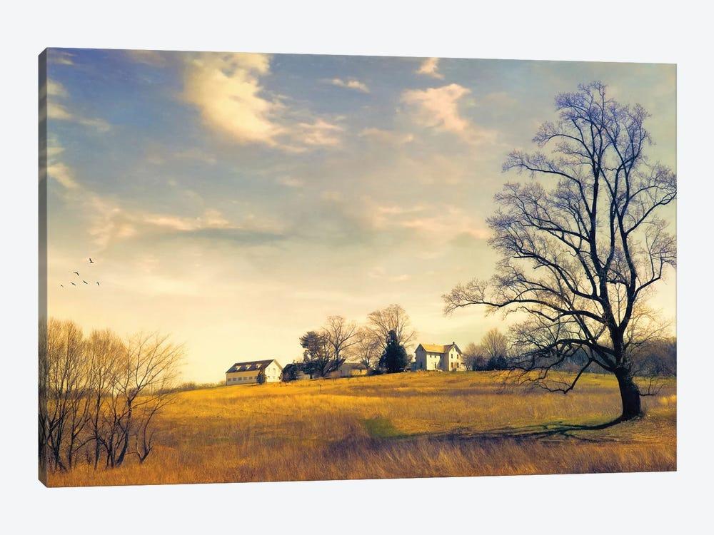 When I Come Back by John Rivera 1-piece Canvas Print