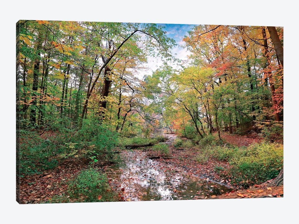 Autumn At Hopkins Pond by John Rivera 1-piece Canvas Print
