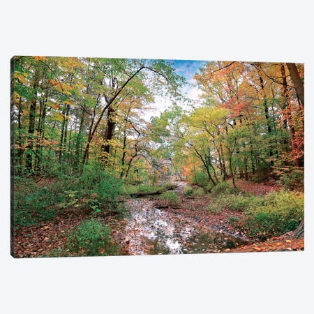 Autumn At Hopkins Pond Canvas Print #RVR3} by John Rivera Canvas Wall Art