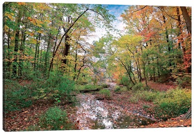 Autumn At Hopkins Pond Canvas Art Print