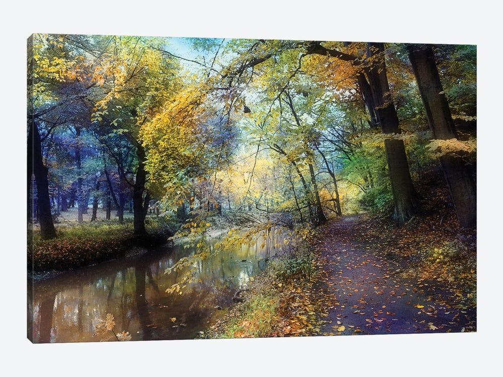 Autumn Walk by John Rivera 1-piece Canvas Artwork