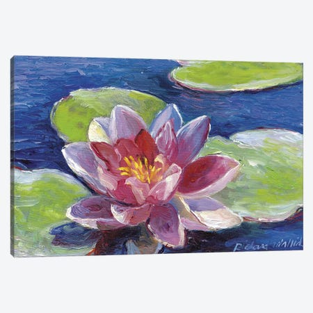 Lily Pad Flowers Canvas Print #RWA104} by Richard Wallich Canvas Artwork