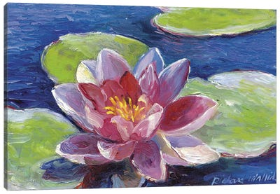 Lily Pad Flowers Canvas Print #RWA104