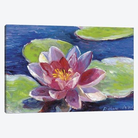 Lily Pad Flowers Canvas Print #RWA104} by Richard Wallich Canvas Artwork