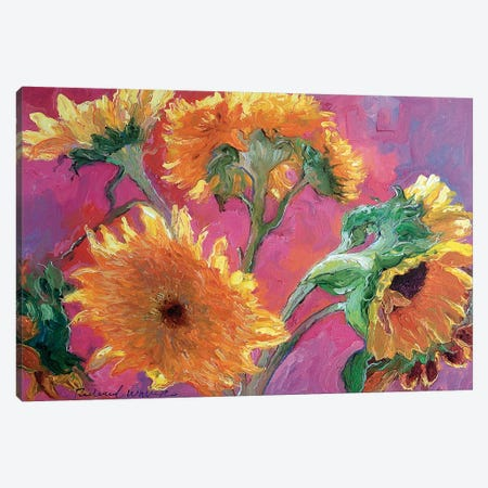 Sunflower Canvas Print #RWA171} by Richard Wallich Canvas Art