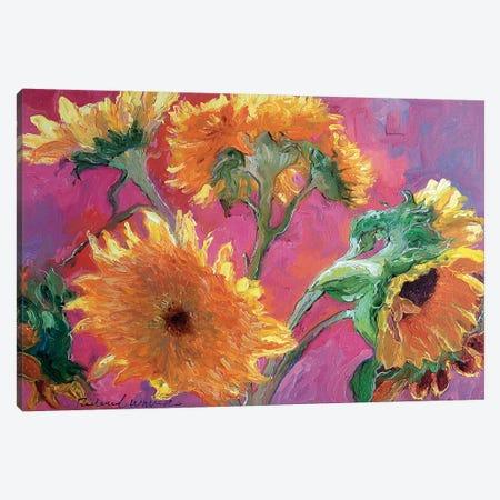 Sunflower Canvas Print #RWA171} by Richard Wallich Canvas Art