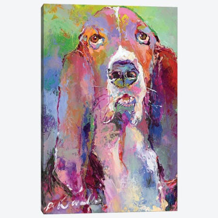 Basset Hound Canvas Print #RWA323} by Richard Wallich Art Print