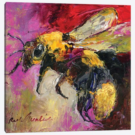 Bee Canvas Print #RWA324} by Richard Wallich Canvas Art
