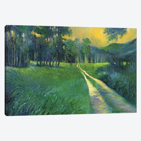 Crestone Path Canvas Print #RWA37} by Richard Wallich Canvas Artwork
