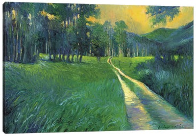 Crestone Path Canvas Print #RWA37