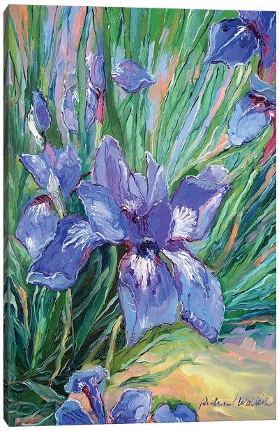 Iris Canvas Print #RWA86