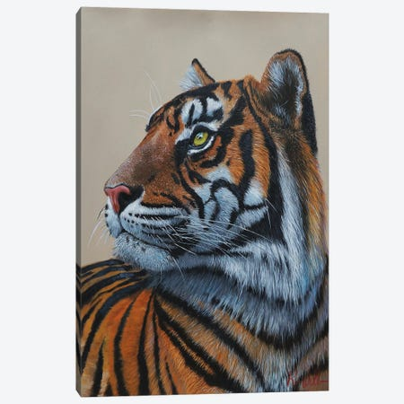 Eye Of The Tiger King. Canvas Print #RWL28} by Reian Williams Canvas Print