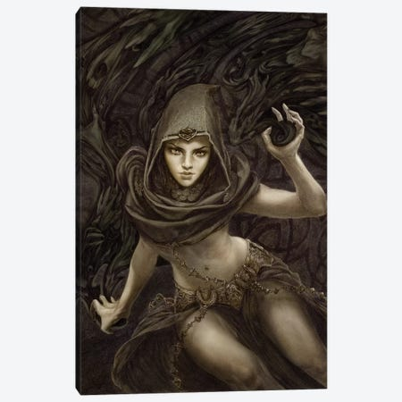 Black Magic Canvas Print #RYA2} by Rebecca Yanovskaya Art Print