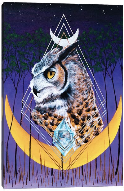 Age Of The Owl Canvas Art Print