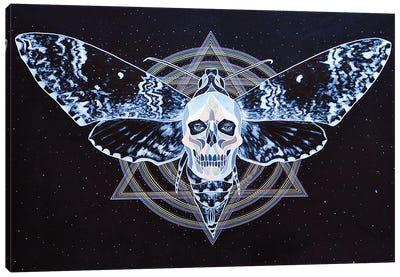 Shadow Alchemy Canvas Art Print