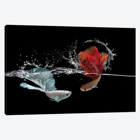 Pisces Canvas Print #RYG10} by Robin Yong Canvas Artwork