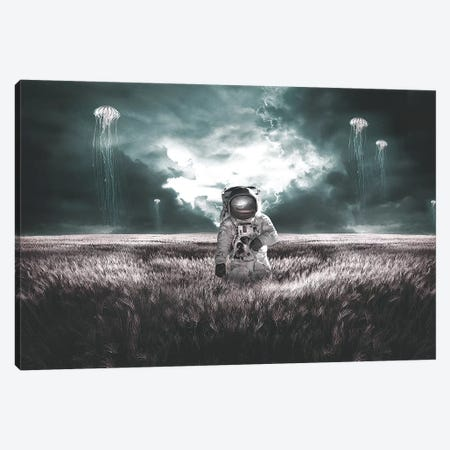 Jellyfish Fields Canvas Print #RYK13} by Shaun Ryken Canvas Art