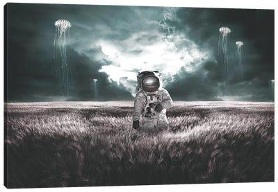 Jellyfish Fields Canvas Art Print