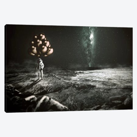 No Gravity Canvas Print #RYK19} by Shaun Ryken Canvas Artwork