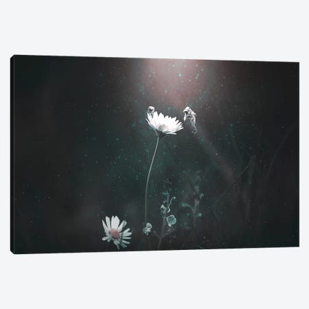 Blooming Expedition Canvas Print #RYK1} by Shaun Ryken Canvas Art Print