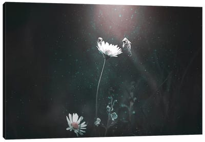 Blooming Expedition Canvas Art Print