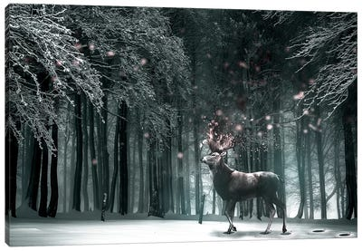 Oh Deer Canvas Art Print